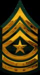 E-9 - SGM