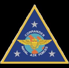 Commander, Naval Air Force